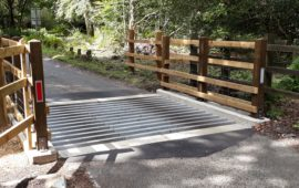 Cattle grids at New Forest National Park