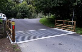 Cattle grids - New Forest National Park